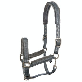 Imperial Riding Dreamlife Head Collar - Dark Silver