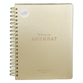 Ted Baker Agenda Women's Book - Light Gold