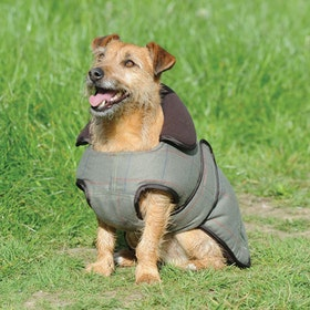 Weatherbeeta Tweed Dog Jacket - Olive