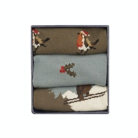 Corgi 3 Pack Cotton Gift Box Men's Socks - Christmas Design