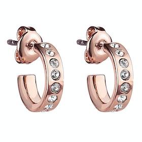 Ted Baker Seeni Mini Hoop Huggie Earrings - Rose Gold Crystal