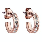 Ted Baker Seeni Mini Hoop Huggie Earrings
