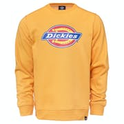 Sweat Dickies Pittsburgh