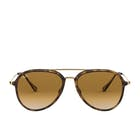 Ray-Ban RB4298 Sunglasses