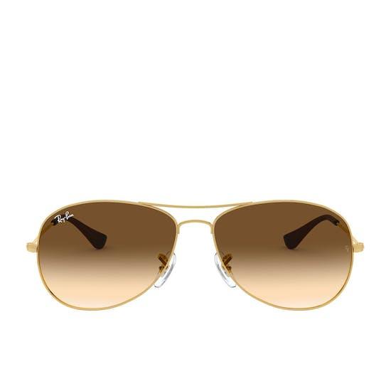 Ray-Ban Cockpit Mens Sunglasses