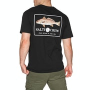 Salty Crew Spot Tail Short Sleeve T-Shirt