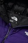 North Face La Paz Hooded Down Jacket