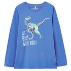 Joules Raymond Boy's Top
