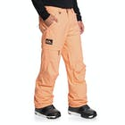 Quiksilver Anniversary Snow Pant