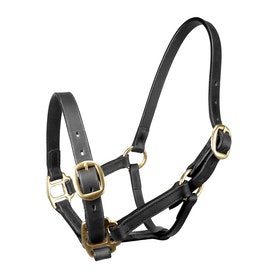 John Whitaker Leather Breeder Head Collar - Black