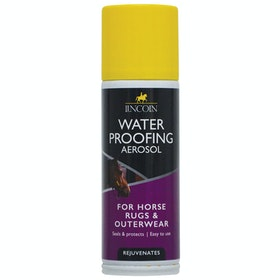 Lincoln Water Proofing Aerosol Rug Accessory - Clear