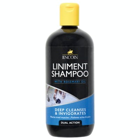 Shampooing Lincoln Liniment - Clear