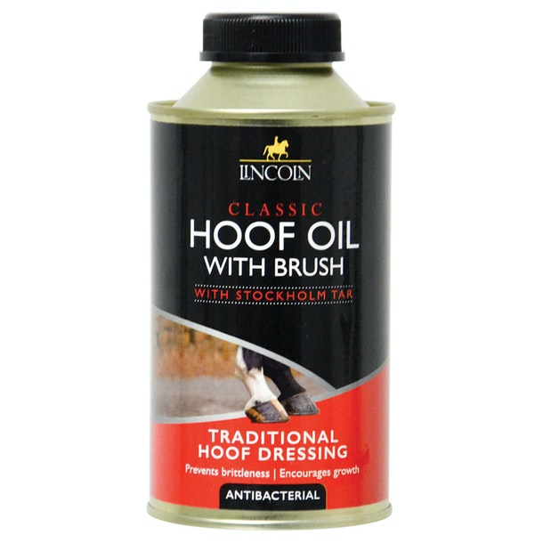 Lincoln Classic with Brush Hoof Oil