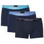 Blue Grotto Cornflower Blue Navy Bl