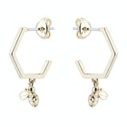 Ted Baker Bedza Bumble Bee Hoop Women's Earrings