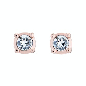 Ted Baker Nenna Nano Sparkle Stud Womens Earrings - Rose Gold/crystal