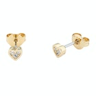 Ted Baker Neena: Nano Heart Stud Earrings