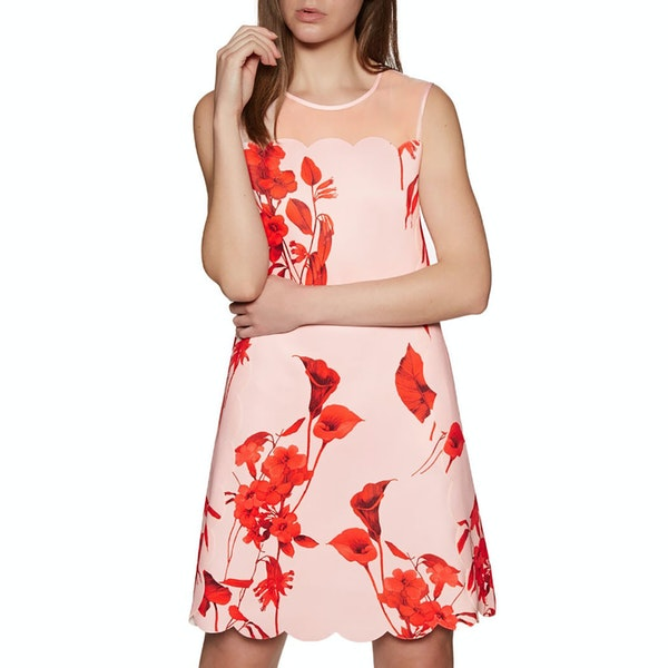 Ted Baker Jaazmin Fantasia Scallop Mini Dress