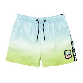 Rip Curl Native Volley Swim Shorts - Blue