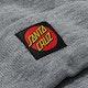Santa Cruz Classic Label Dot Beanie