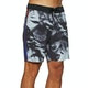 Globe Dion Eclipse Boardshorts