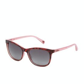 Occhiali da Sole Donna Cath Kidston Ombre - Tortoise Pink