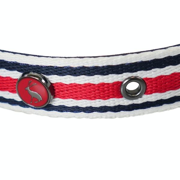 Collier pour chiens Joules Striped