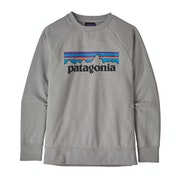 Sweat Enfant Patagonia Lw Crew