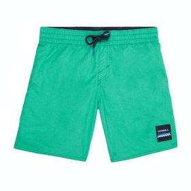 Shorts de natación Boys O'Neill Vert - Salina Green