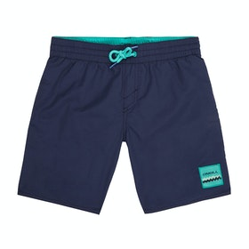 Shorts de natación Boys O'Neill Vert - Scale