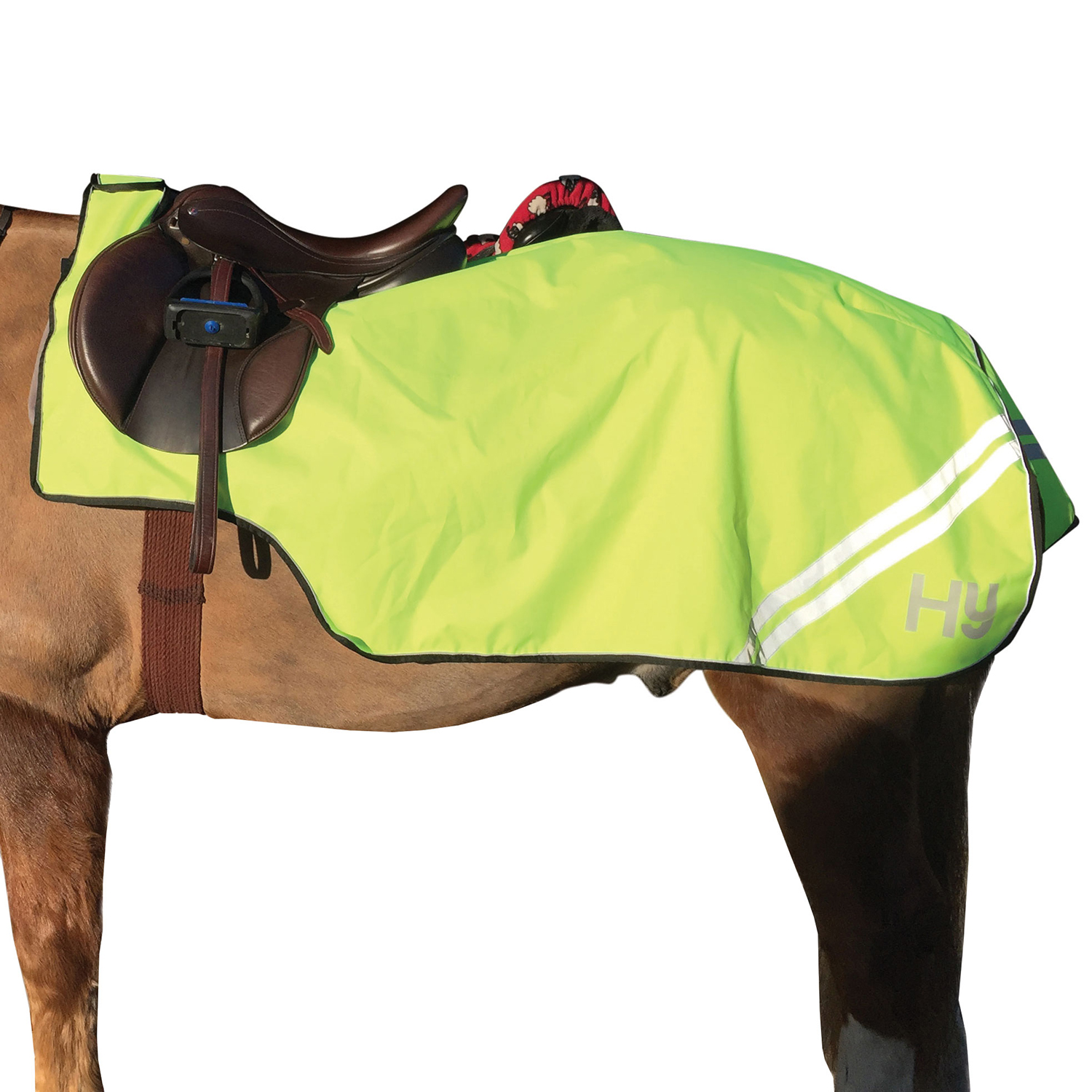 EXERCISE SHEET CHRISTMAS FANCY DRESS HORSE PONY NEW EQUESTRIAN