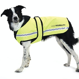Equisafety Polite Dog Jacket - Yellow