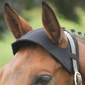 Hy Poll Guard Bridle Accessory - Black