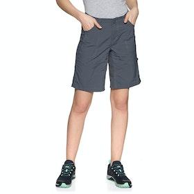 Shorts pour la Marche Femme North Face Horizon Sunnyside - Vanadis Grey