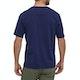 Patagonia Fitz Roy Scope Organic T Shirt