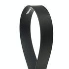 Vivienne Westwood Line Orb Buckle Light Gold Women's Leather Belt