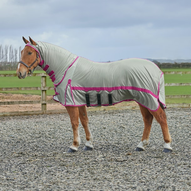 Derby House Pro Fly Rug Available From