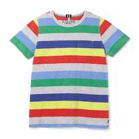 Joules Caspian Kortærmede T-shirt - Grey Multi Stripe