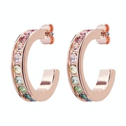 Earrings Senhora Ted Baker Reanna Small Crystal Hoop