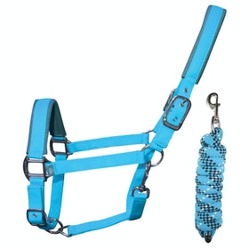 Woof Wear Colour Fusion Lead Rope & Head Collar - Turquoise