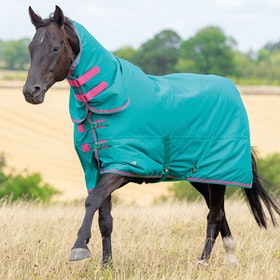 Shires Tempest Original 100 Combo Turnout Rug - Green Pink