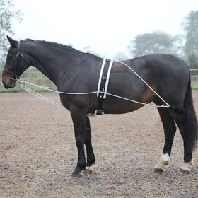 Shires Lunging Training Aid - Black