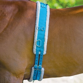 Shires Nylon with Fleece Padding Lunge Roller - Blue