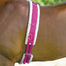 Shires Nylon with Fleece Padding Lunge Roller - Raspberry
