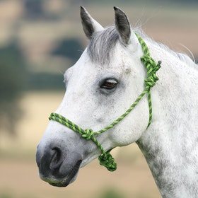 Shires Rope Control Head Collar - Lime Black