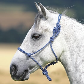 Shires Rope Control Head Collar - Navy White