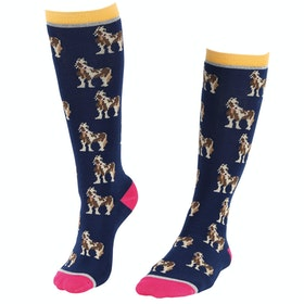 Riding Socks Bambini Shires Everyday - Coloured