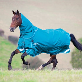 Shires Stormcheeta 200g Rug and Neck Set Turnout Rug - Green