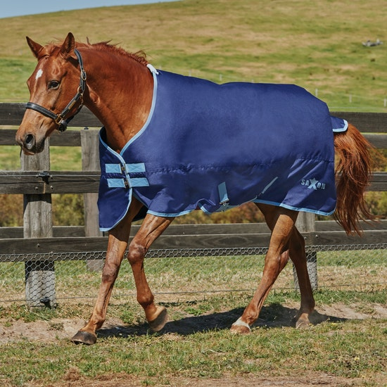 Saxon 600D Medium 200G Standard Neck Turnout Rug