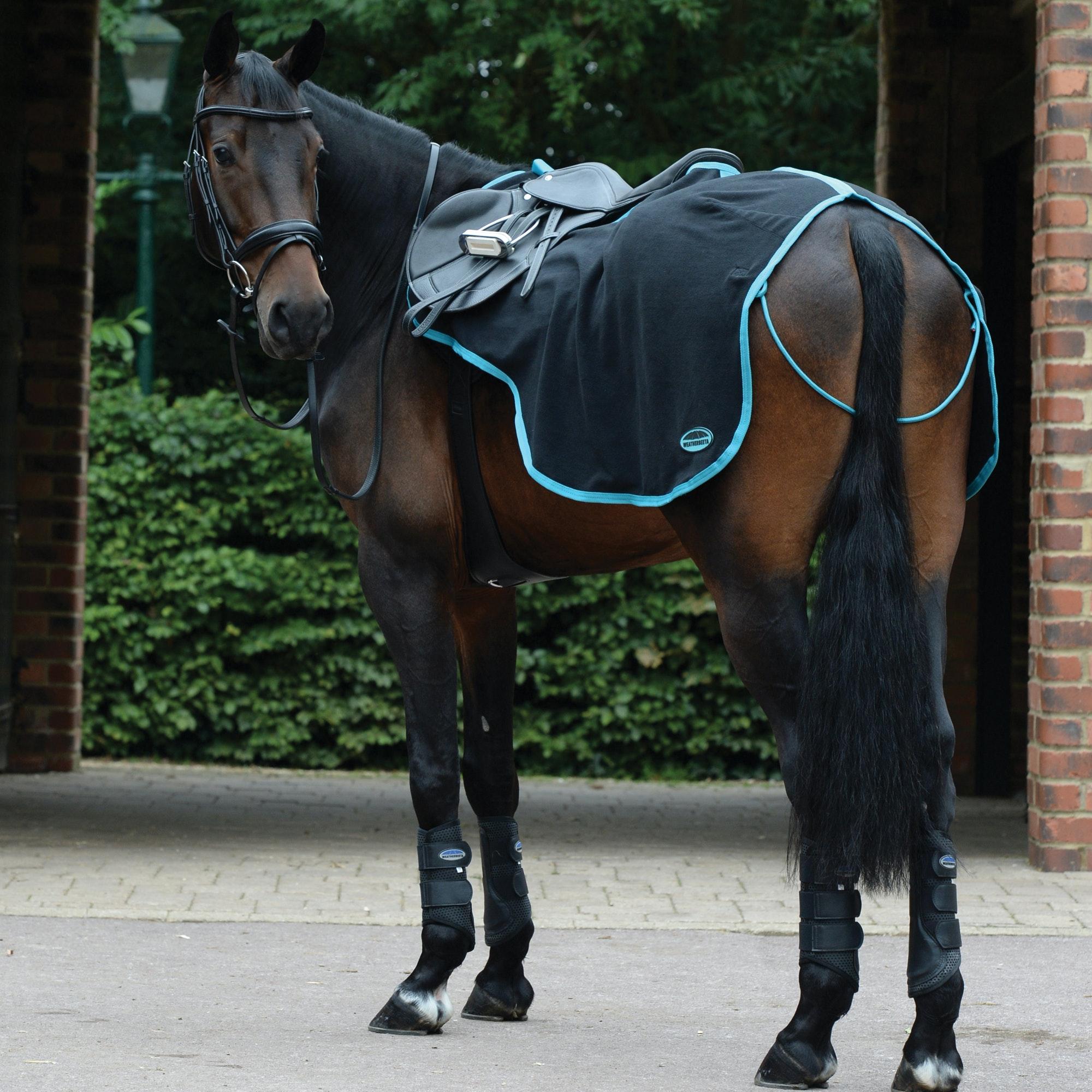 Saxon PP Stable Rug Medium II Dark Blue// Claret Plaid